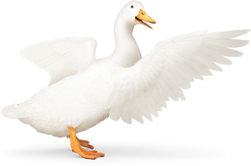 Aflac Claim Form. No Additional Article Context Or Content: Irs