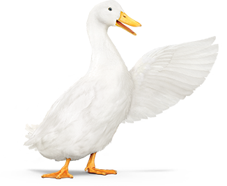 The Aflac Duck, with wing extended.