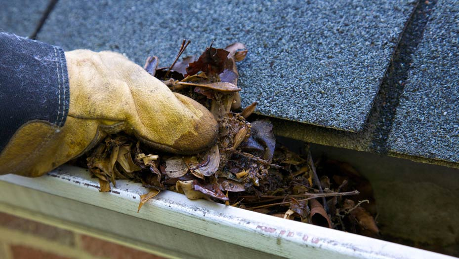 Accidents can happen all around the home, like when you are cleaning your gutters.
